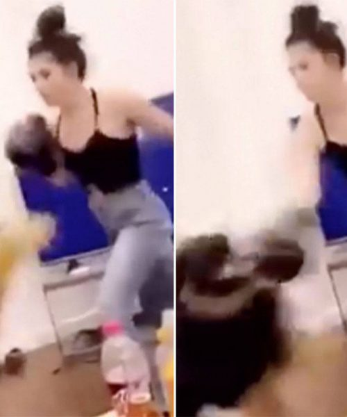 Animaux : une femme boxe son chien en se filmant, la vidéo de l'horreur