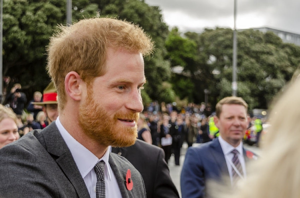 The Crown Prince Harry Netflix